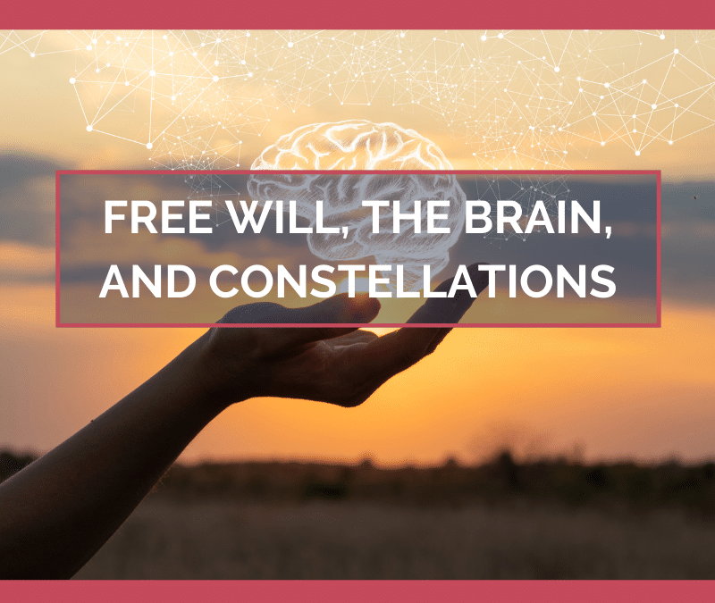Free Will, the Brain, and Constellations