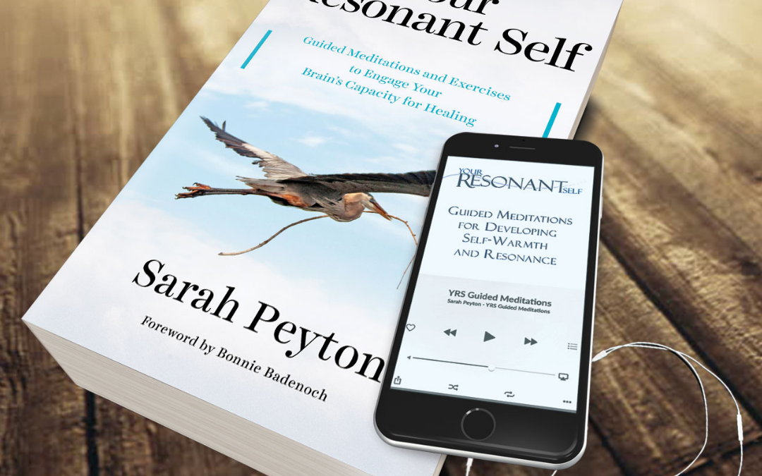 Your Brain & Your Contracts: a 16-week Your Resonant Self Book Study Series