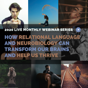 Webinar Bundle: All 2020 Monthly Neuroscience Webinars