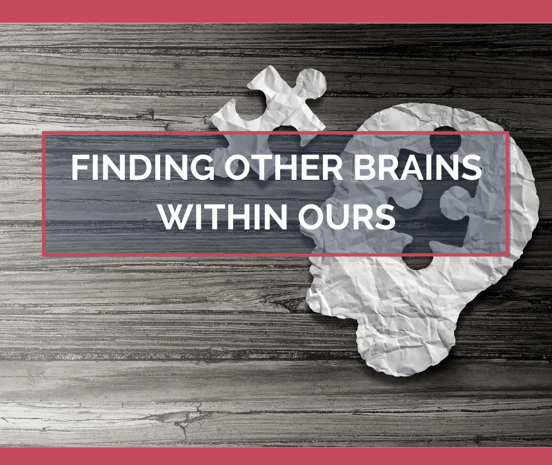 Finding Other Brains Within Ours