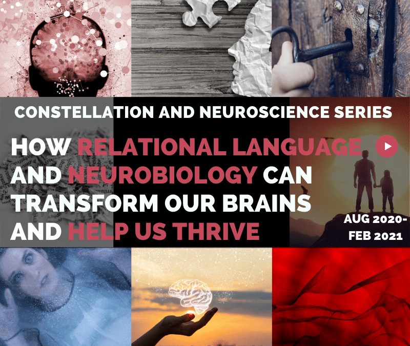 2020-2021 Neuroscience and Constellations Exploration Series