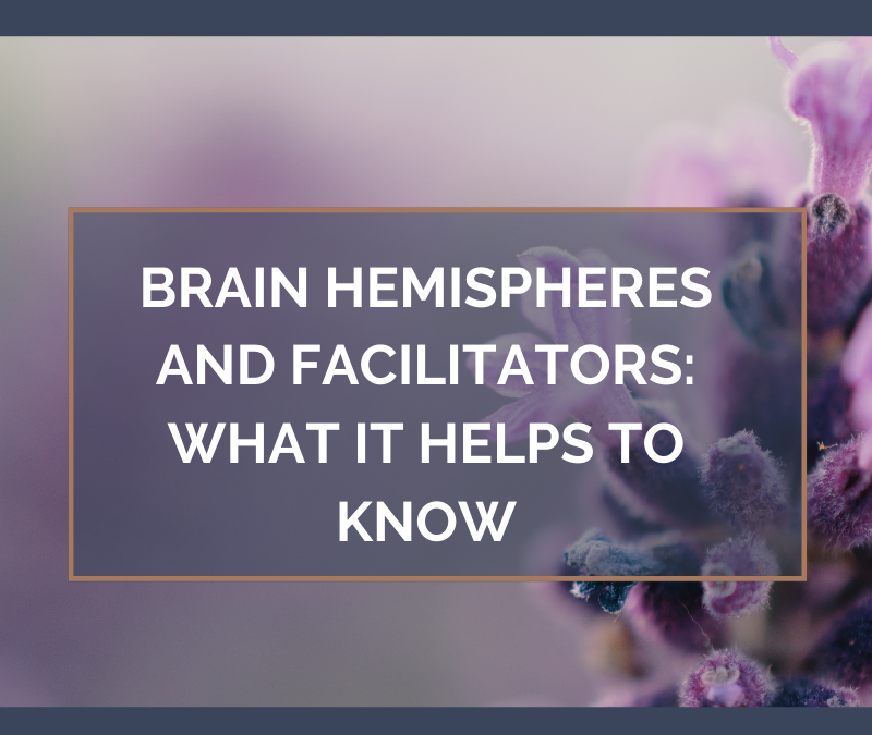 Brain Hemispheres and Facilitators: What It Helps to Know