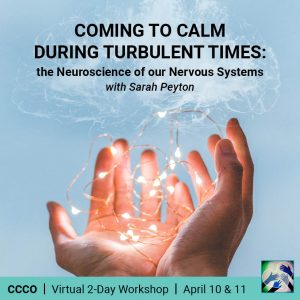 Protected: Coming to Calm in Turbulent Times – hosted by ccco
