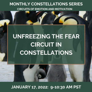 Unfreezing the FEAR Circuit in Constellations – January 17, 2022
