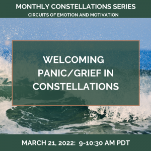 Welcoming PANIC/GRIEF in Constellations – March 21, 2022