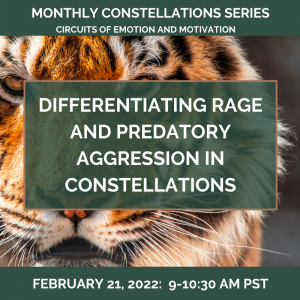 Differentiating RAGE and Predatory Aggression in Constellations – February 21, 2022