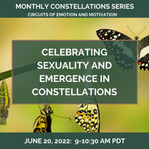 Celebrating SEXUALITY and Emergence in Constellations – June 20, 2022